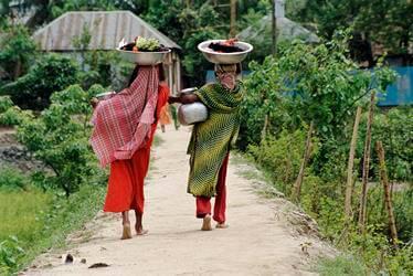 Bangladeshi women carry water