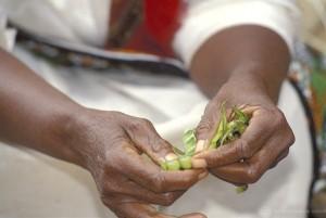 Woman shelling peas. Kenya.